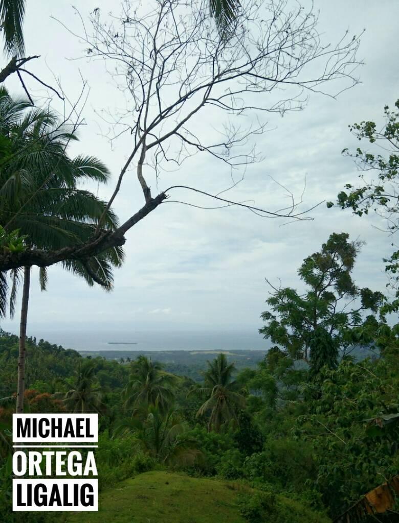 6e6a3521c5f3f89c5b8db7493cae9637 - Overlooking Tubigon, Bohol - Philippine Photo Gallery
