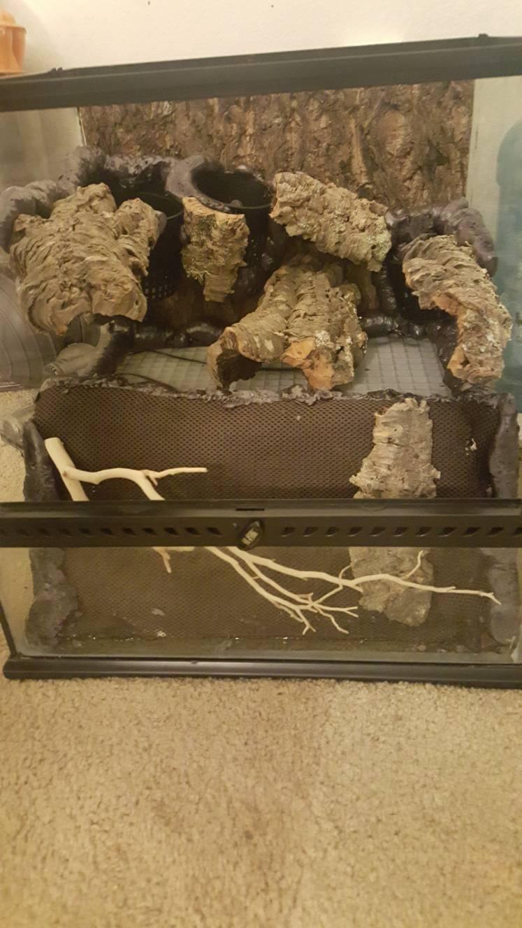 Zoo Med Natural Cork Tile Dendroboard