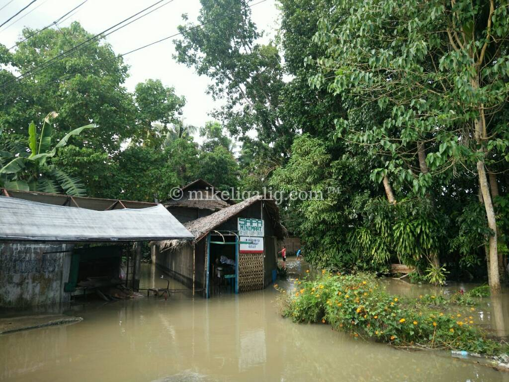 97fbb28c96ea5a3a2296b49c3e05951d - Flooding in Loboc, Bohol After Storm Agaton - Loboc - Bohol