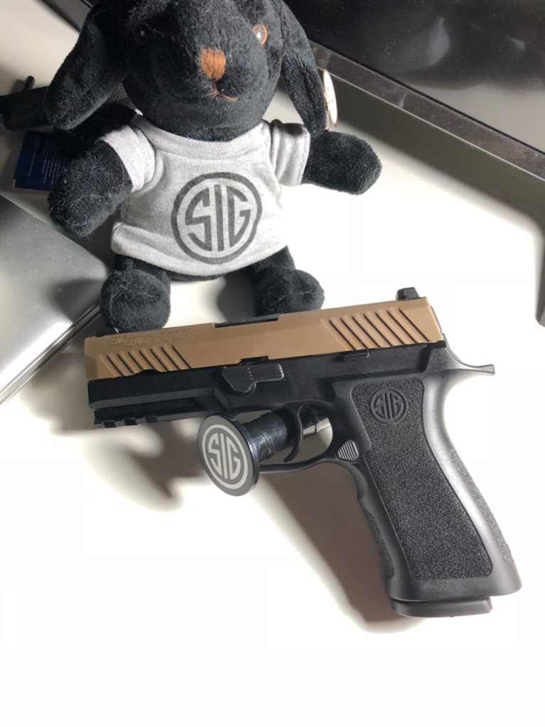 Put my 320 Compact Slide on a Mod X Carry Grip - SIG Talk