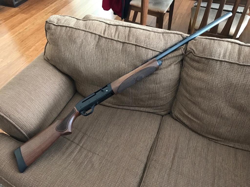 Duck Hunting Chat • Remington V-3 : Shotgun Forum - Page 3