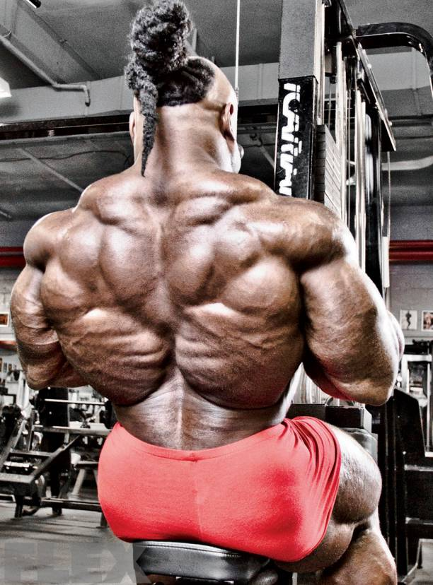 Who has the best back in bodybuilding