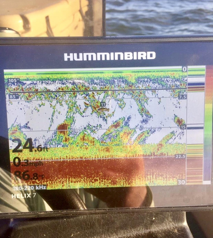 Humminbird vs Lowrance - TexasBowhunter com Community