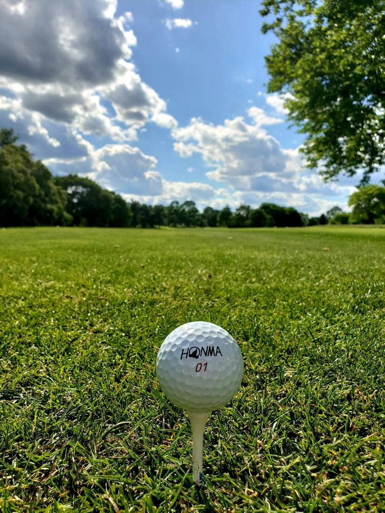 Contest: Honma TW-G6 Golf Balls - Page 2