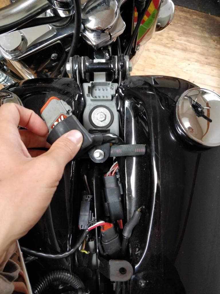 Harley Davidson Turn Signal Module Location   Wiring ... on