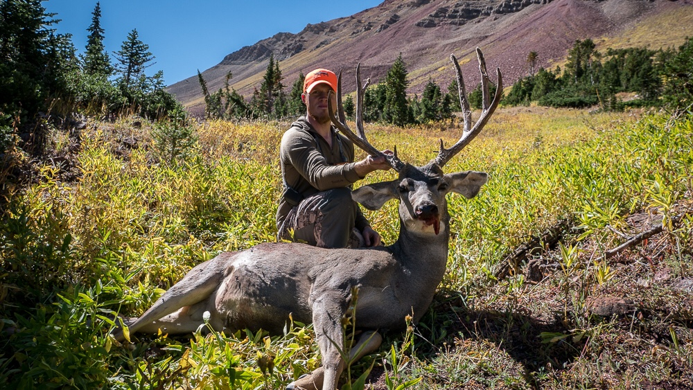 My first western hunt  Public land mulies!! - The Hunting Beast