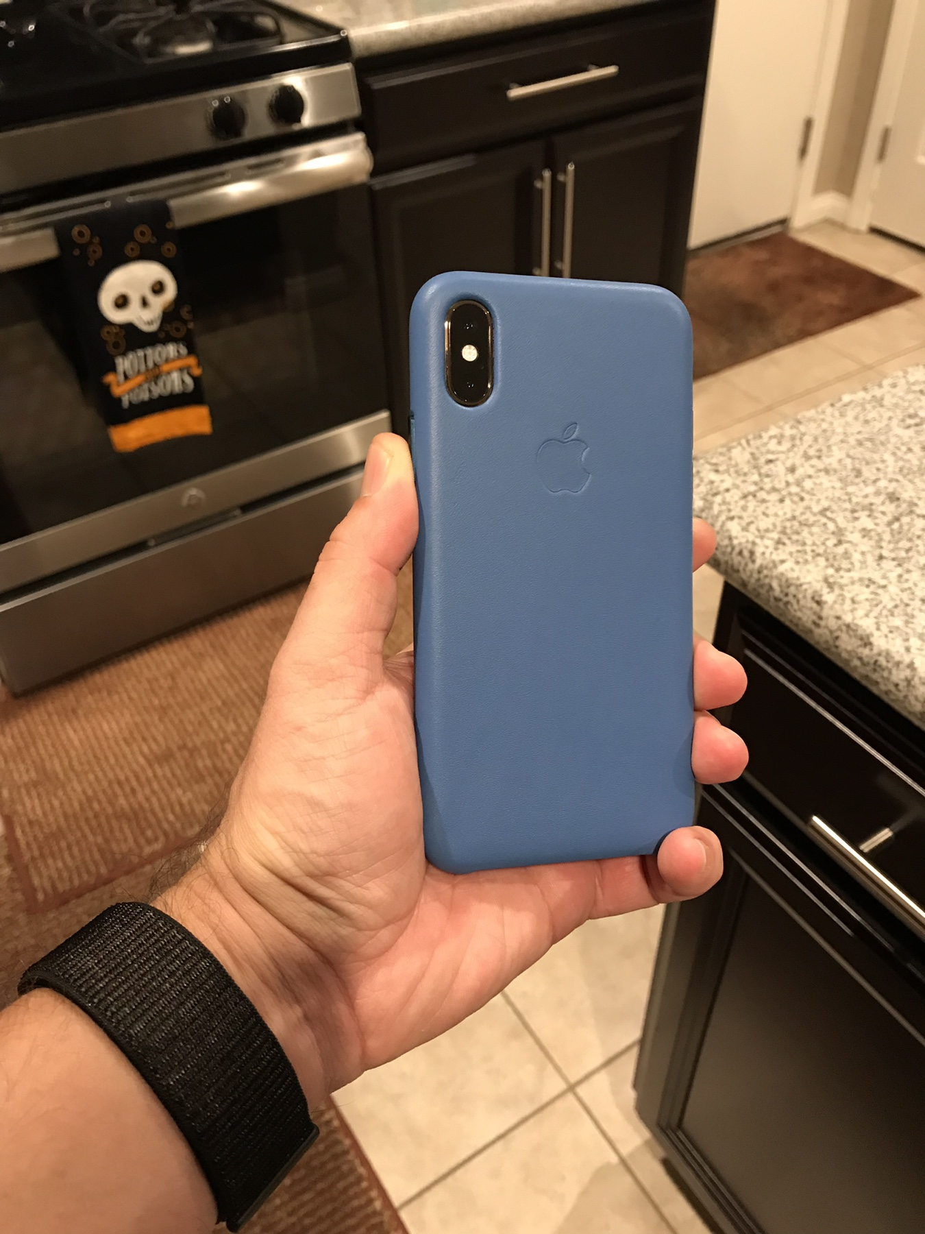 iphone xs case blie