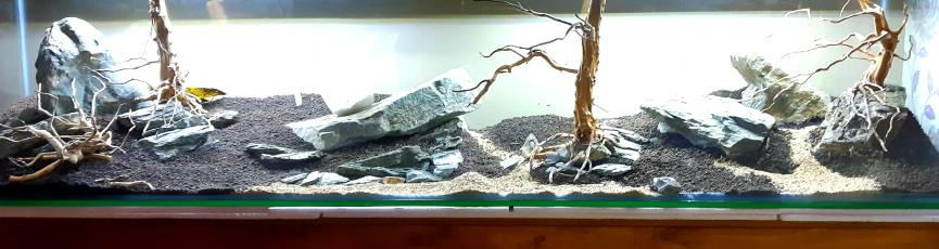 Hardscape Nearly Done On My New 6ft The Planted Tank Forum