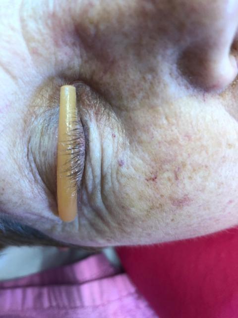 Bad Elleebana lash lift results | SalonGeek