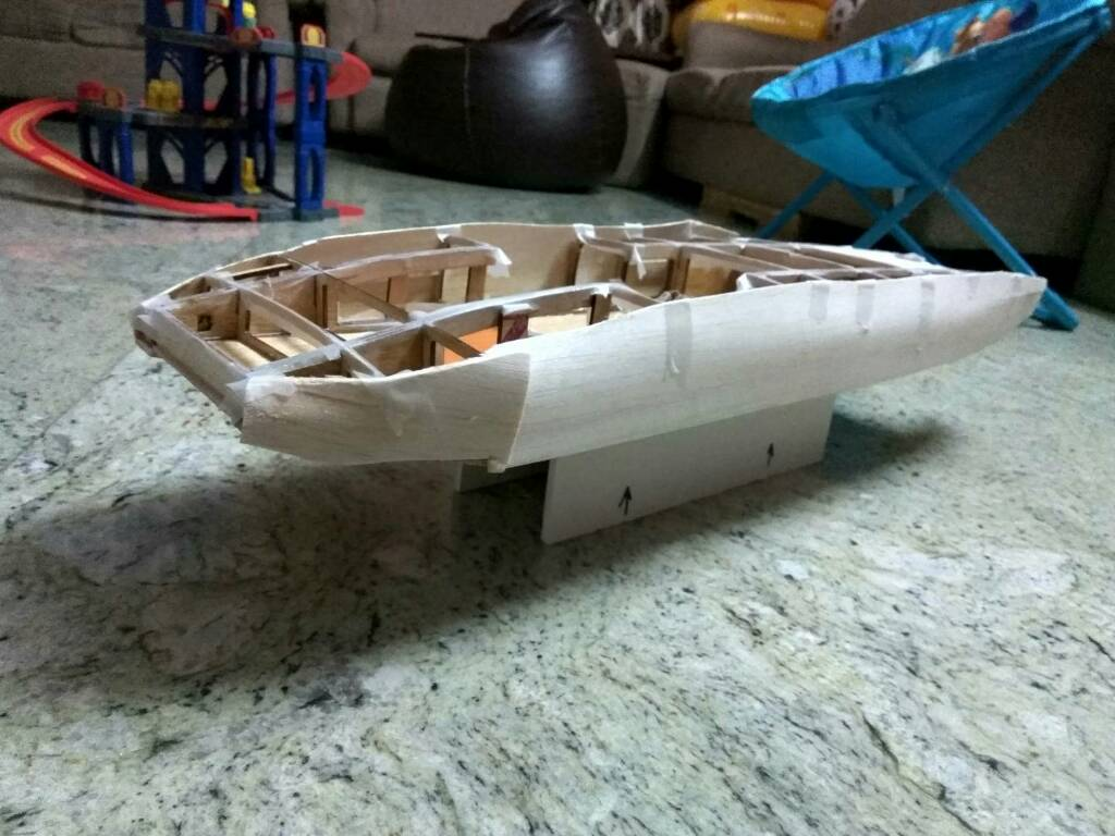 RC catamaran boat - India's open forum for RC flying