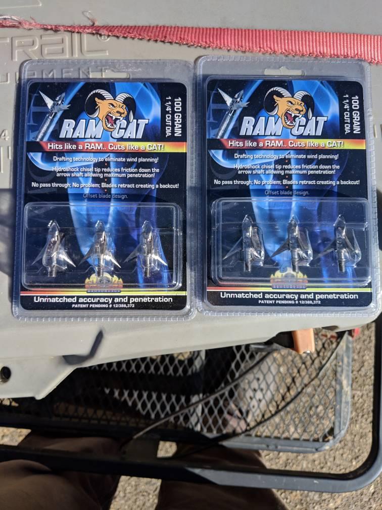 Ramcat broadheads   saddlehunter com