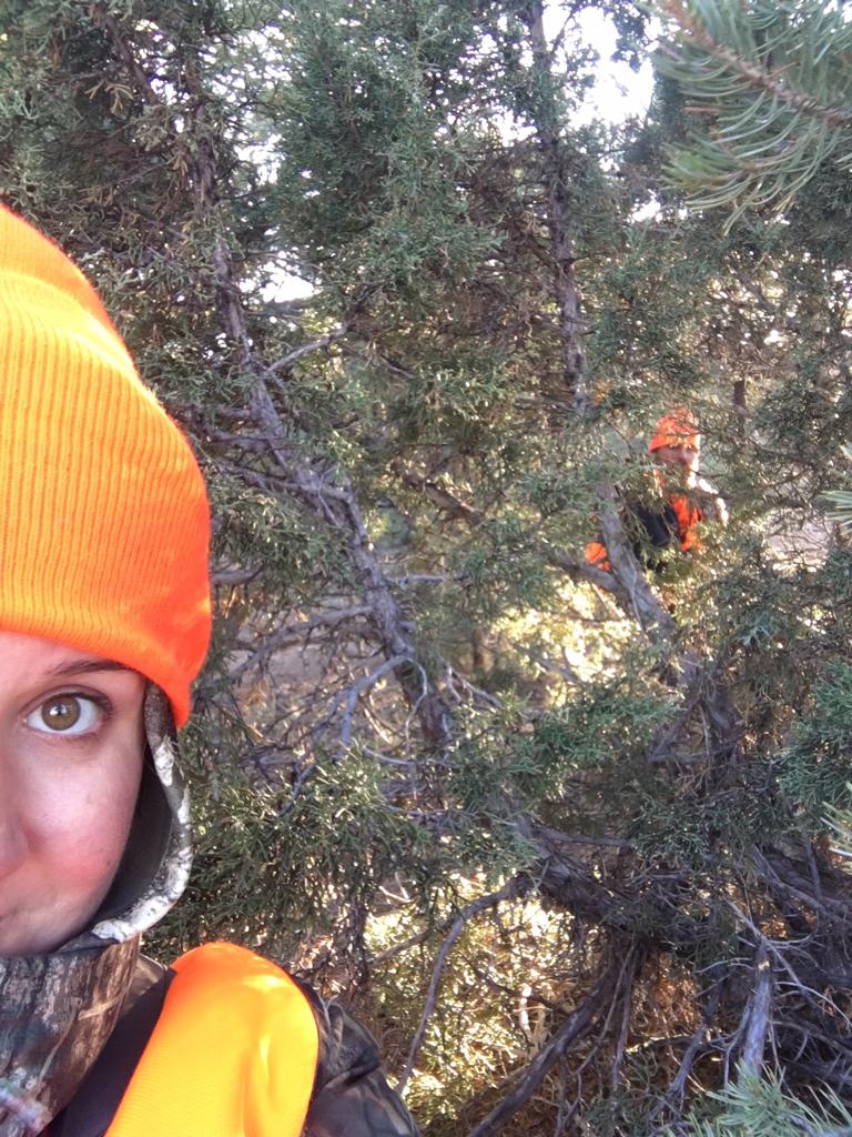 Colorado, Unit 62, 3rd Season Mule Deer - TexasBowhunter com