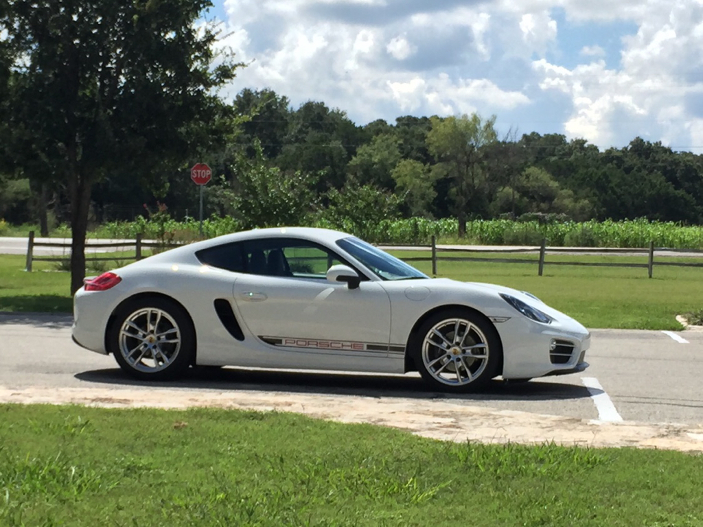 Cayman 981 Side Decals
