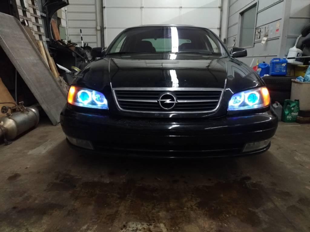 I Recently Did Whole Custom Lights With Morimoto Conversion And Led Toys In It Like Demon Dropped High Beams Too Since Have Bi Xenon Now
