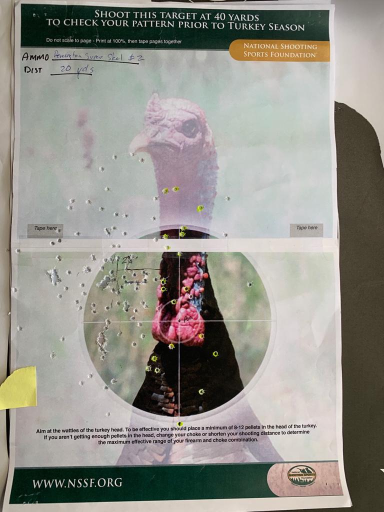 image regarding Printable Turkey Head Target referred to as Turkey Burden Surprise - Hevi-13 choke -
