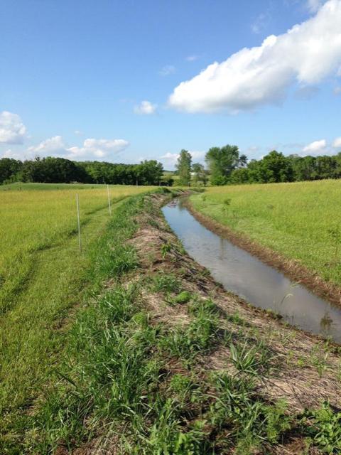 Backyard Drainage Issue...Need suggestions