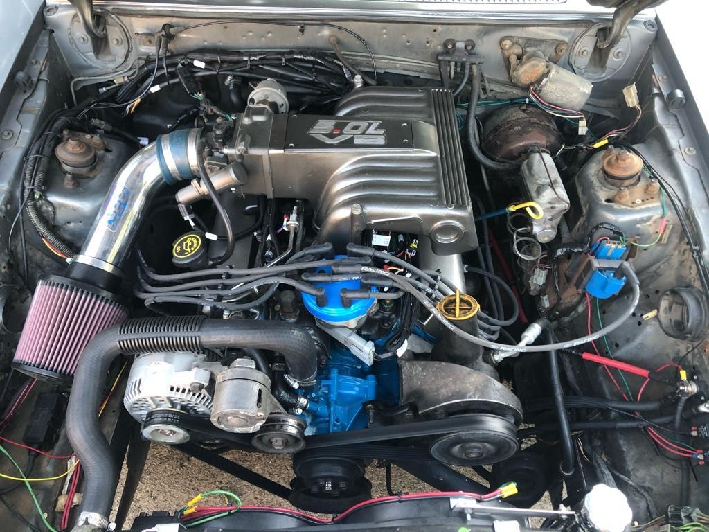 Mustang Terminator Intake