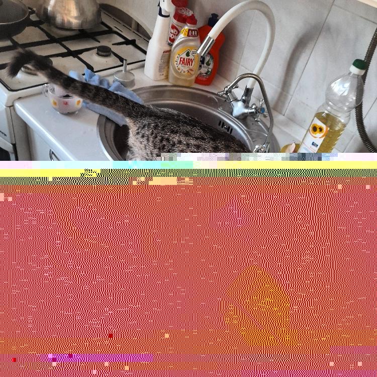 3c8907d624ae9f4102ce55f2baf81a9b.jpg