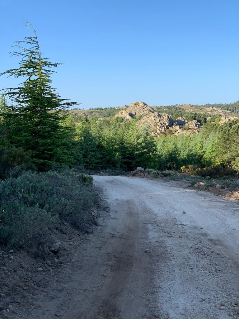 WRC: Rally d'Italia - Sardegna [3-6 Junio] - Página 2 657162ebc9280b43a9943592865e4a97